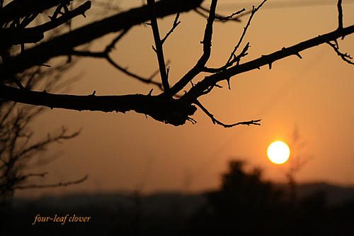 山に沈みゆく夕陽