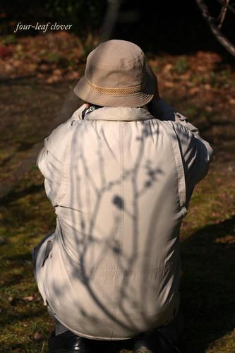 背中に梅の影
