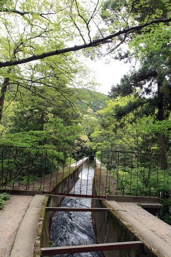 南禅寺・水路閣の上からの景色