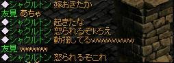 syaku3.jpg