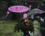 mhf_20100113_231924_708.jpg