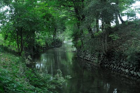 玉川上水の水路