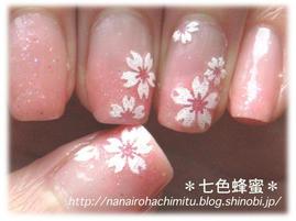 自爪61舞い散る花びら