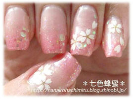 自爪120桜花咲く