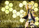 Lily_F.jpg