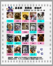 0209satooyakai.jpg
