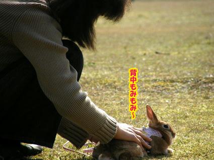 20090408-1.jpg