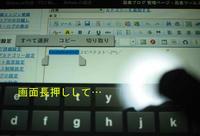 PC230486.jpg