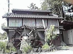 2010092005.jpg