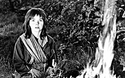 ビョークのネズの木:映画