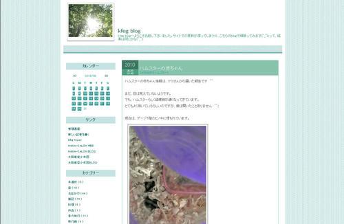 kfeg-blog.jpg