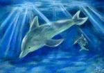 BlueDolphin