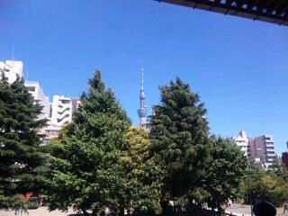SH3800720001.jpg