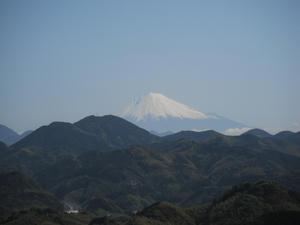 清水山に行く途中からの富士山2011/04/24