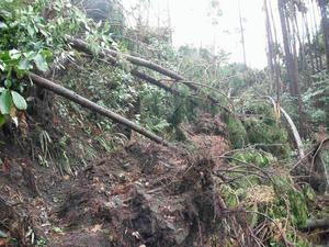 9月の台風の後