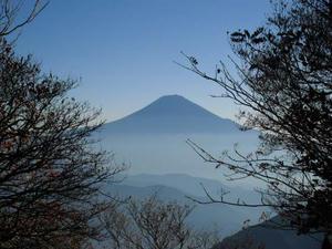 青笹山付近から富士山