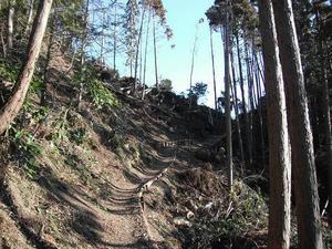 日本坂峠付近