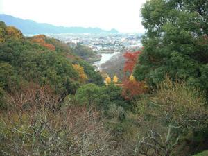 山の上から蓮花寺池