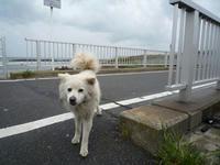 20080510-飯岡