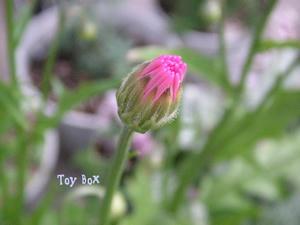 200951.jpg
