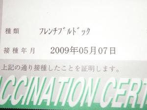 PICT1551.JPG