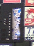 朝倉-谷繁
