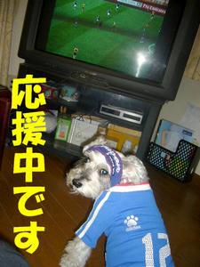 がんばれニッポン2
