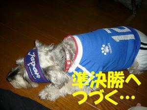 がんばれニッポン5