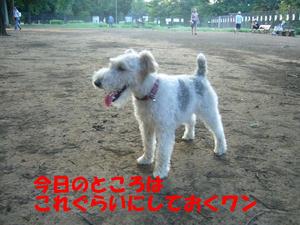 小金井公園8