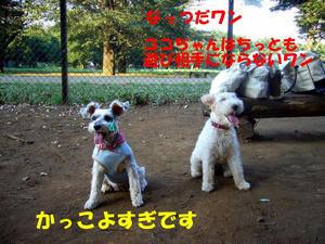 小金井公園7