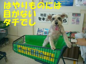 マジカルアイ4