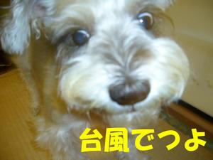 台風注意2