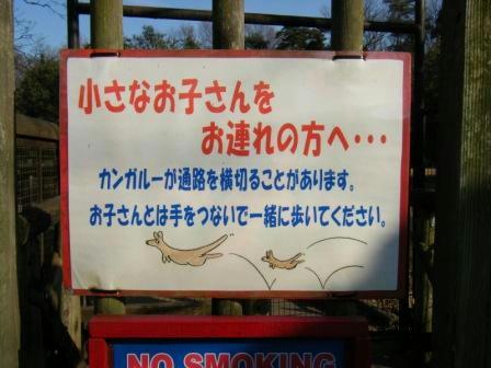 2008_02230209.JPG