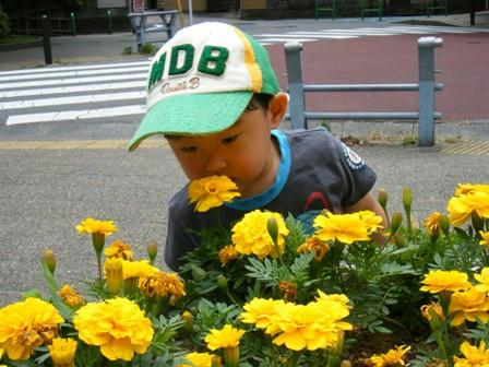 2008_06200013.JPG