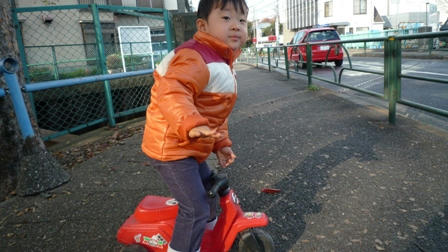 2008_12010011.JPG