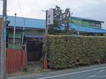kisarazu-yanagiyu-s2.JPG
