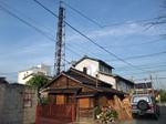 satte-sugito-602-yayoiyu2.JPG