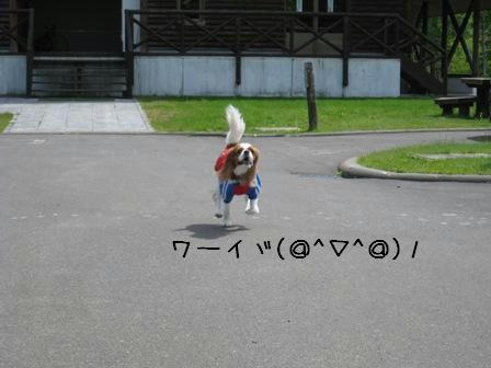 20080531-5.jpg