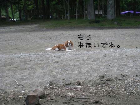 20080706-4.jpg