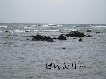 yagishiri-3.jpg