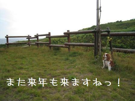 yagishiri-10.jpg