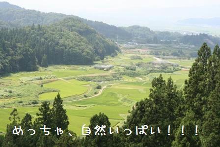 20080812-5.jpg