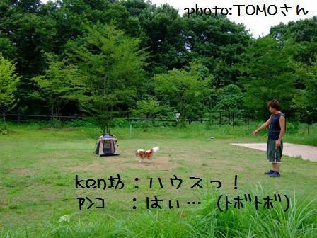 20080812-8.jpg