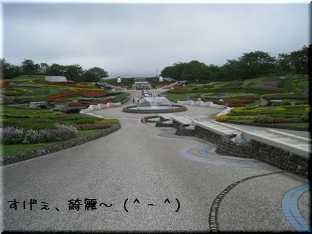20080813-4.jpg