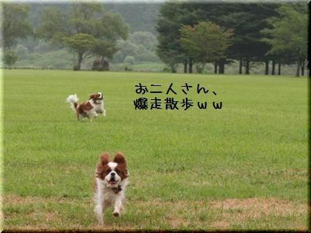 20080813-7.jpg