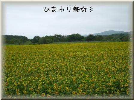 20080814-8.jpg