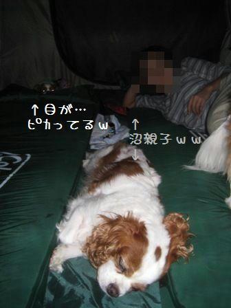 20080906-5.jpg