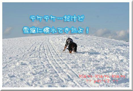 20100202-k3c.jpg