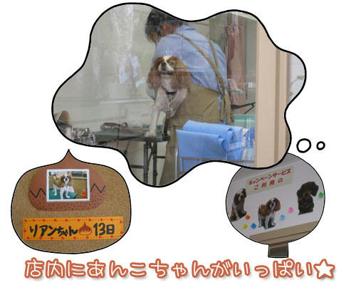 2010-09-13-2.jpg