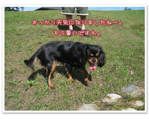 2010-09-03-4.jpg